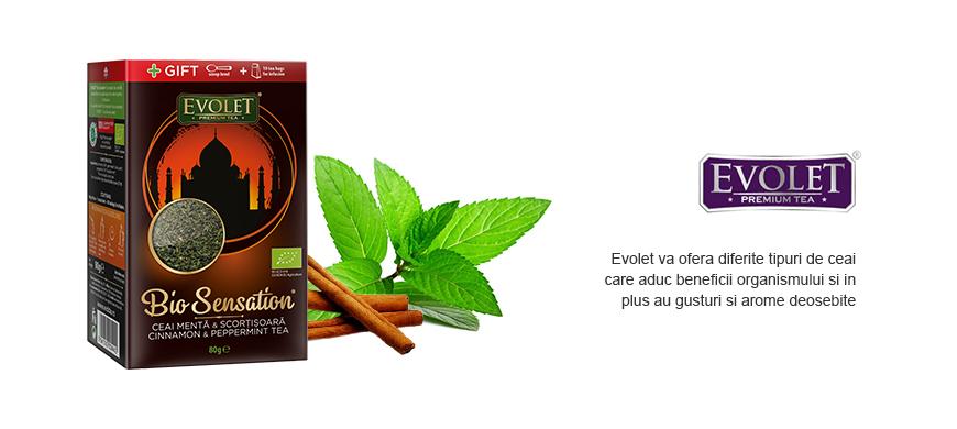 Ceai Evolet Menta si Scortisoara 80 g
